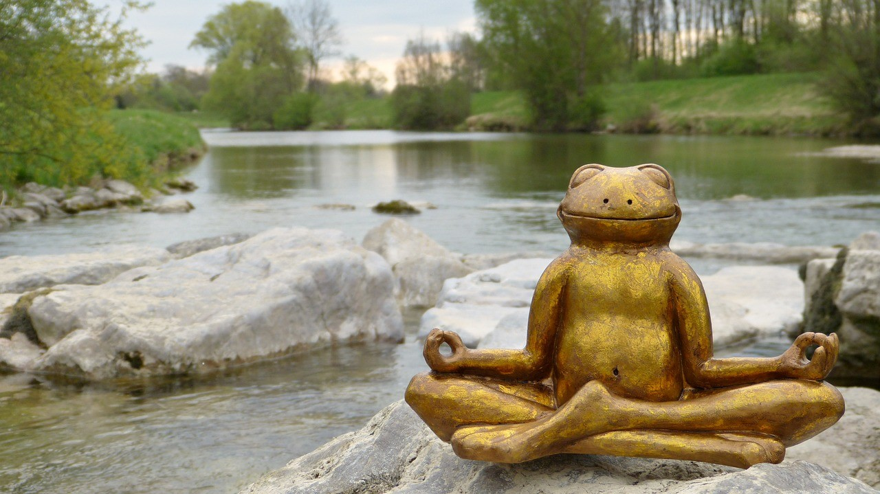 Image of a golden frog statue in a meditation pose, beside a flowing stream.