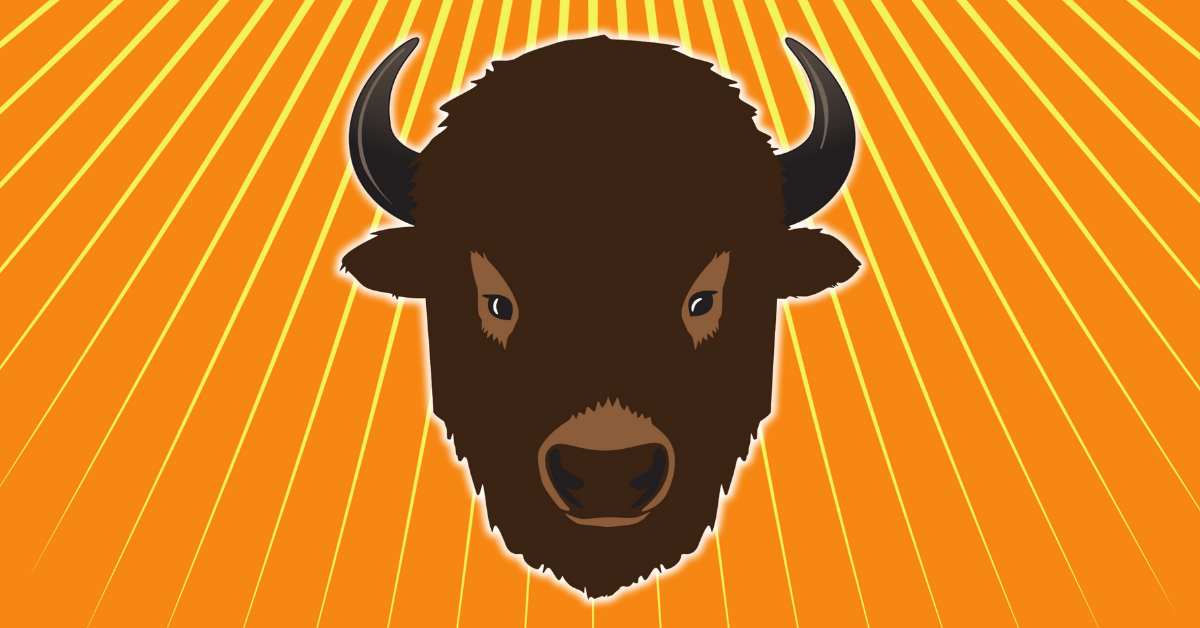 Image of a buffalo on an orange background from Buffalo: The Name Dropping Game